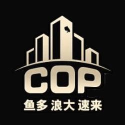 COP Converter for Holdem Manager 3